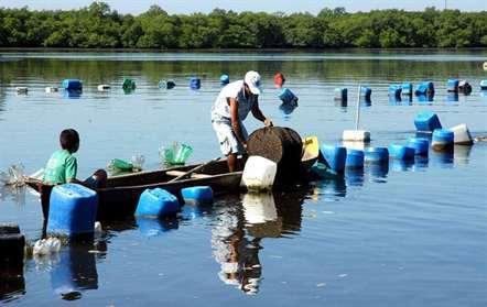 Nações Unidas financia com 11,1 milhões de dólares projeto de pesca em Angola