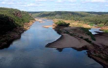Moçambique vai translocar cerca de três mil animais selvagens
