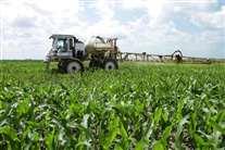 Os subsídios para a agricultura e pescas em Angola estão a ser analisados esta quinta-feira (Foto AP)