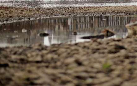 Seca deixa 1,25 milhões de pessoas em risco de insegurança alimentar, alerta SADC