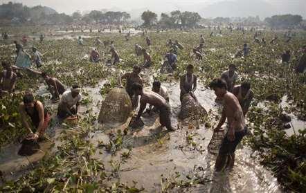Aldeões participam na pesca comunitária nas celebrações de Bhogali Bihu, que marca o fim da safra, na vila de Panbari (Anupam Nath/AP)
